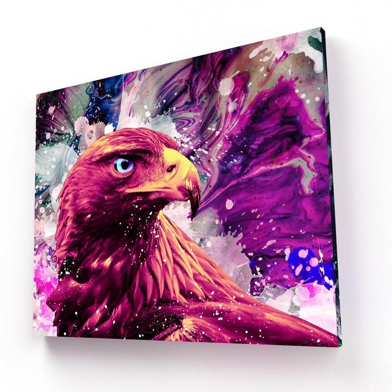 tableau faucon aigle