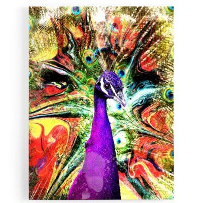 tableau-cadre-paon-poparts-coloré-jaune-violet-oiseau