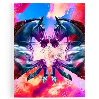 tableau-cadre-toile-aluminium-cheval-coloré-rouge-bleu-rose-multicolore