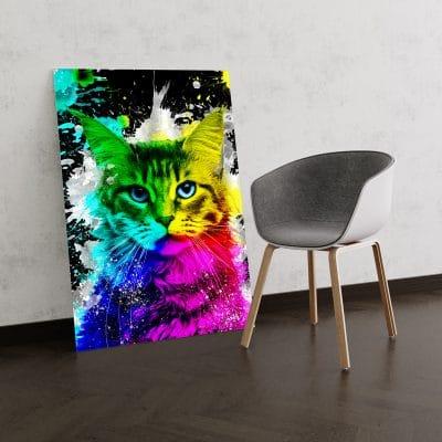 tableau chat multicolore