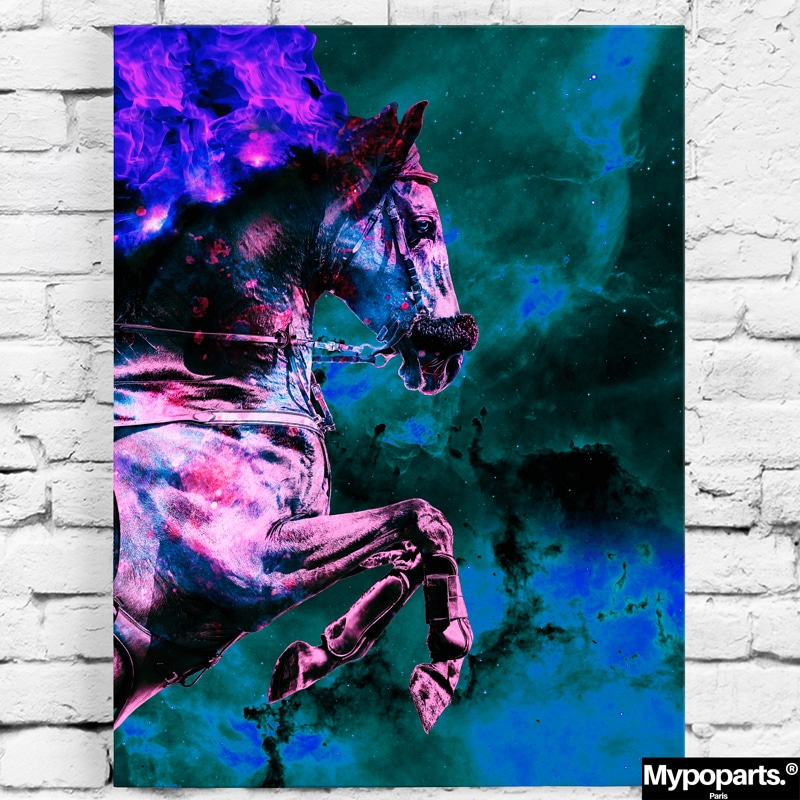 tableau cheval chevaux coloré pop art art cheval decoration murale