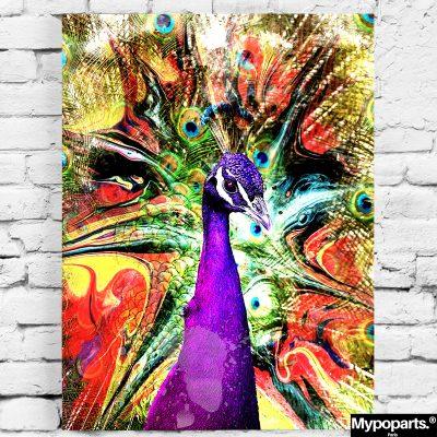 tableau paon coloré