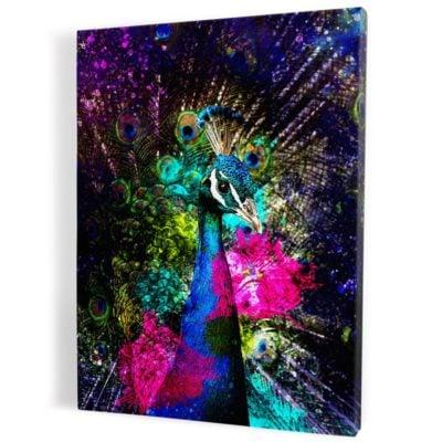 tableau-paon-poparts-coloré-bleu-violet-rose-oiseau