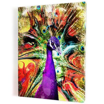 tableau-paon-poparts-coloré-jaune-violet-oiseau