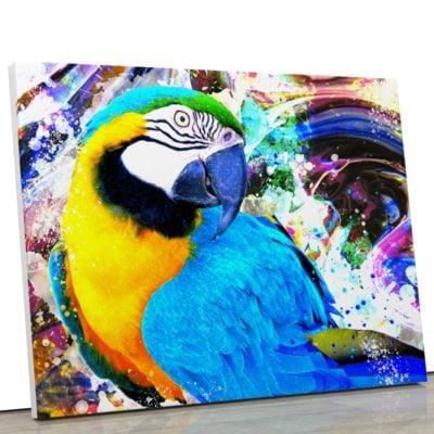 tableau-perroquet-coloré-multicolore-bleu-jaune-blanc-noir-