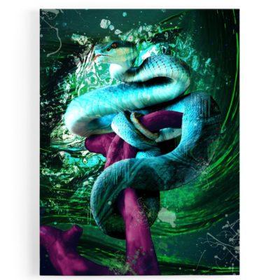 Tableau serpent coloré 3