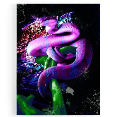 tableau-toile-serpent-popart-coloré-violet-multicolore-