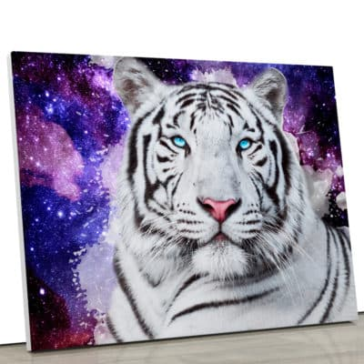 tableau tigre blanc Tigre du Bengale poster toile deco animaux coloré pop art