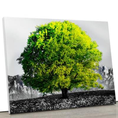 tableau-arbre-de-vie-tableau-arbre-vert-decoration-murale-nature-noir-et-blanc-et-vert-toile-deco-poster