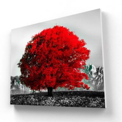 tableau arbre rouge noir et blanc coloré