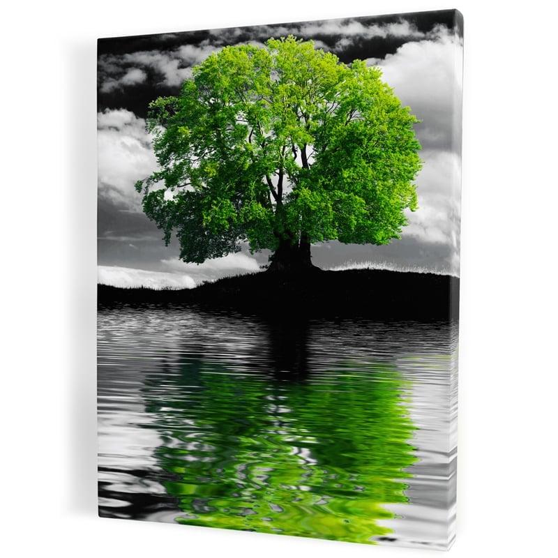 tableau-cadre-toile-arbre-vert-noir-blanc-eau-ile-decoration-nature-paysage-vert-