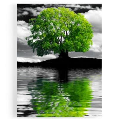tableau-cadre-toile-arbre-vert-noir-blanc-eau-ile-decoration-nature-paysage-vert-TABLEAU-ARBRE-DE-VIE-PAYSAGE-NATURE