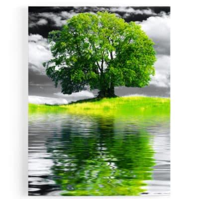 TABLEAU ARBRE VERT COLORE ARBRE DE VIE VERT ILE PAYSAGE NATURE DECORATION MURALE NATURE