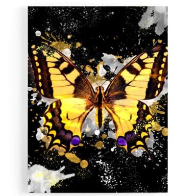 tableau-cadre-toile-poster-papillon-coloré-popart-multicolore-noir-jaune-blanc