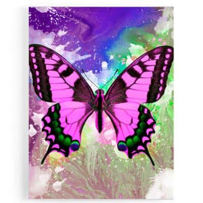 tableau-cadre-toile-poster-papillon-coloré-popart-multicolore-rose-vert-blanc-bleu