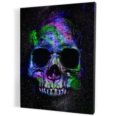tableau-cadre-toile-tete-de-mort-crane-biker-decoration-murale-pop-art-coloré