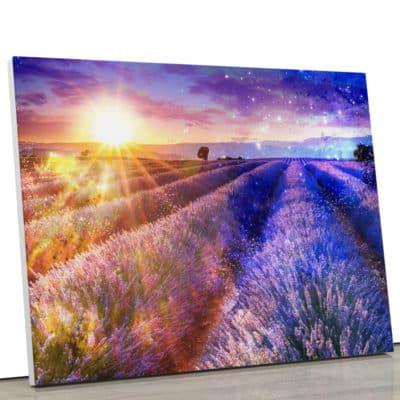 tableau-champs-de-lavande-nature-et-paysage-decoration-nature-soleil-tableau-toile-poster-deco