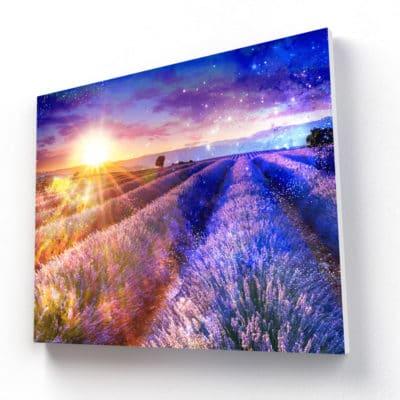 tableau champs de lavande tableau nature paysage champs lavande