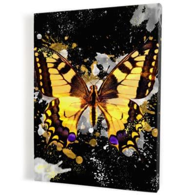 tableau-papillon-coloré-popart-multicolore-noir-jaune-blanc