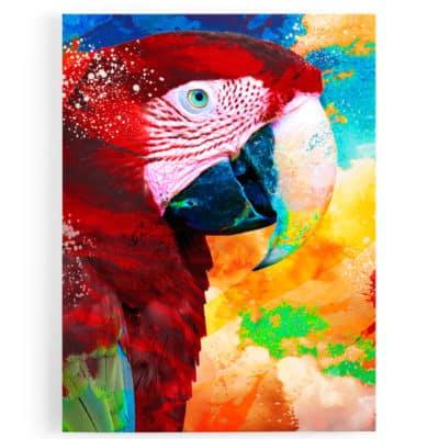 tableau-perroquet-multicolore-rouge-bleu-jaune-vert-tableau-animaux-popart-coloré-perroquet