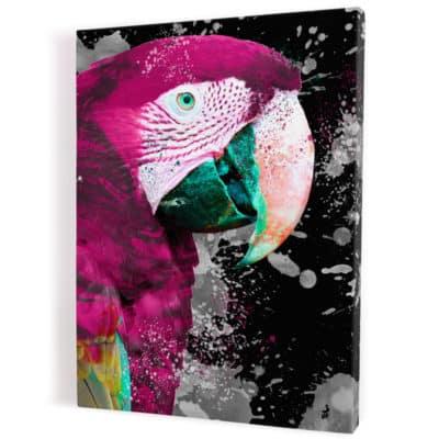 tableau-perroquet-multicolore-violet-rose-bleu-noir-blanc-tableaux-coloré-animaux-popart