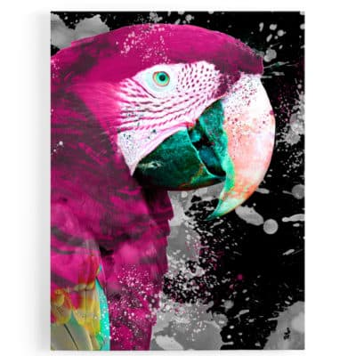 tableau-perroquet-multicolore-violet-rose-bleu-noir-blanc-tableaux-coloré-animaux-popart-perroquet