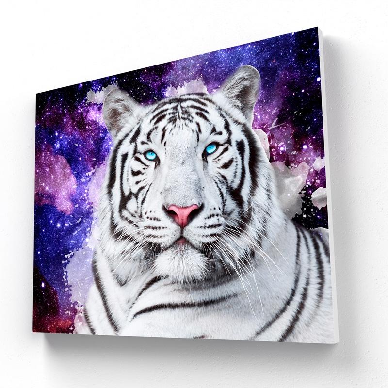tableau tigre blanc coloré
