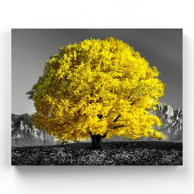 tableau arbre jaune nature