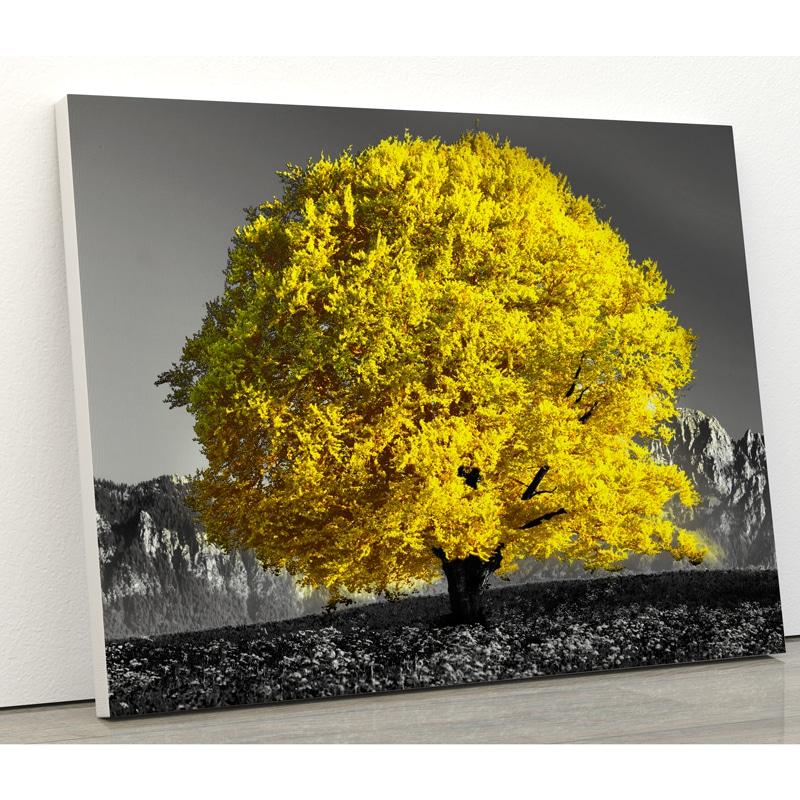 tableau arbre jaune coloré nature et paysage decoration poster toile cadre