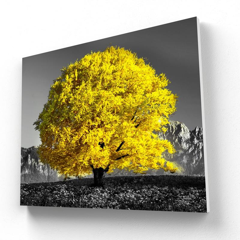 tableau jaune arbre jaune