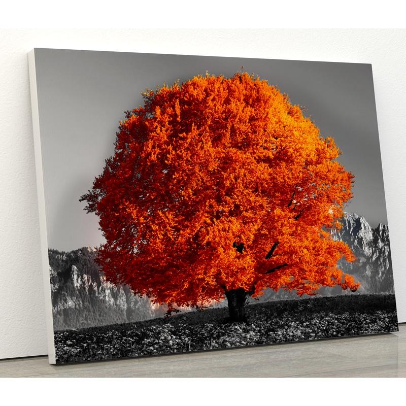 tableau arbre orange coloré tableau arbre coloré pop art