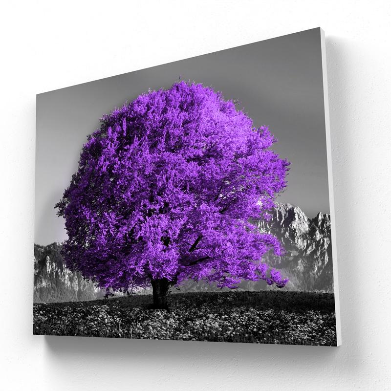 toile arbre violet