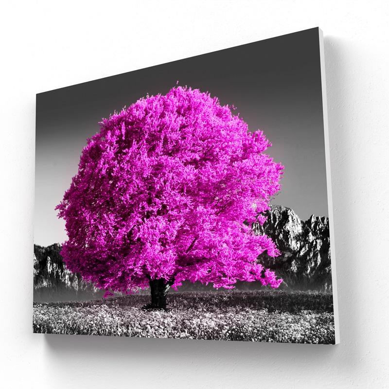 cadre arbre rose